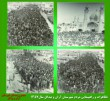 چهل و دومین سالگرد پیروزی انقلاب اسلامی