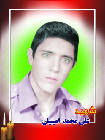 علی محمد امینیان